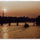 Paris at dusk. by naranzaria