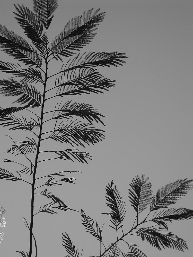 little leaves by AvenLove