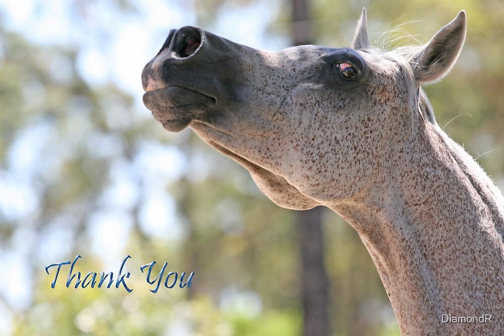 Thank You Card (Naazanikil) by DiamondR