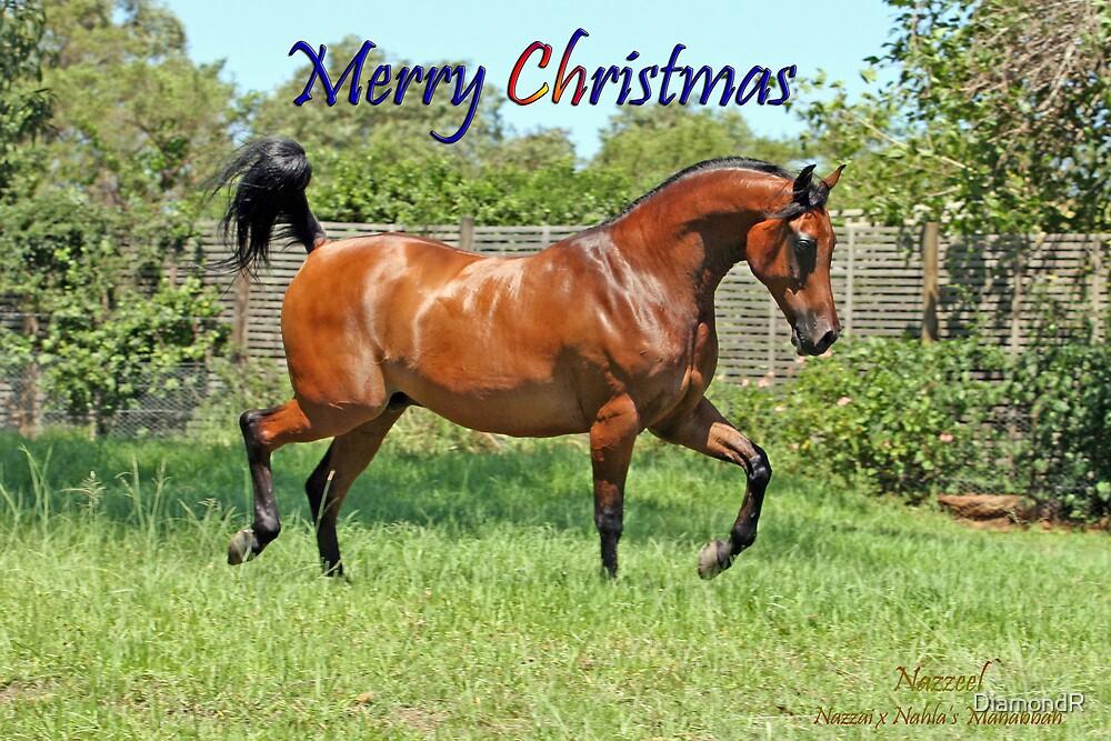 Christmas Card (Nazzeel) by DiamondR