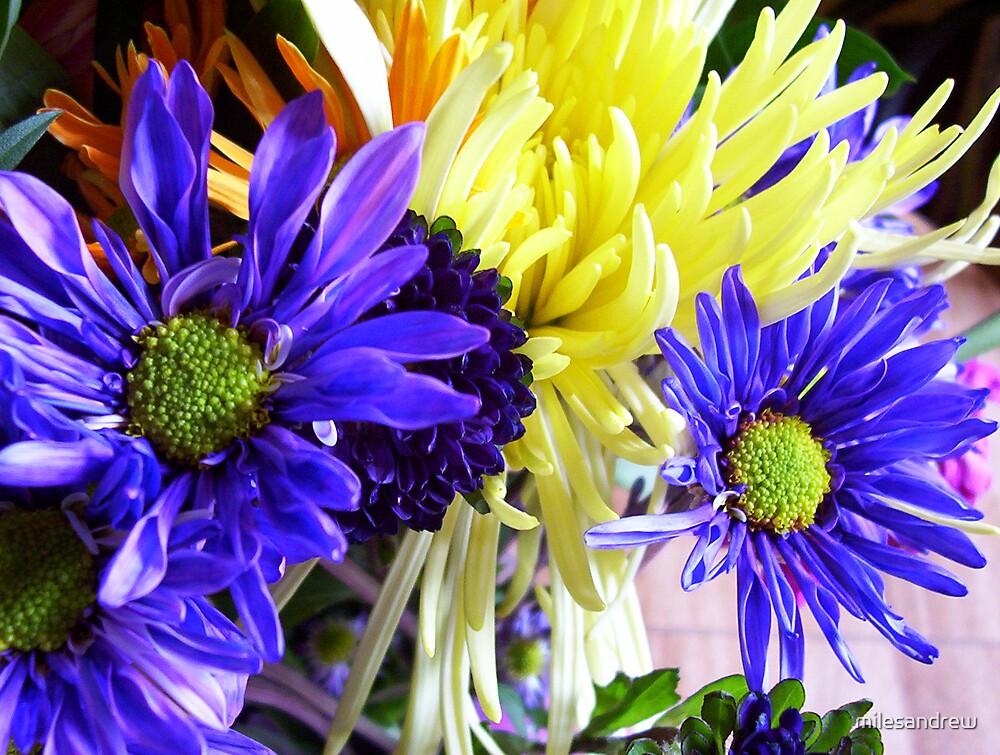 powerful flowers by milesandrew