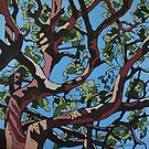 Angophora3 by Ingrid Russell