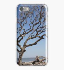 Driftwood Beach, Jekyll Island, Georgia iPhone Case/Skin