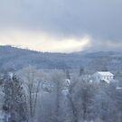 Masonic lodge, church steeple, snowy Oregon forest by Dawna Morton