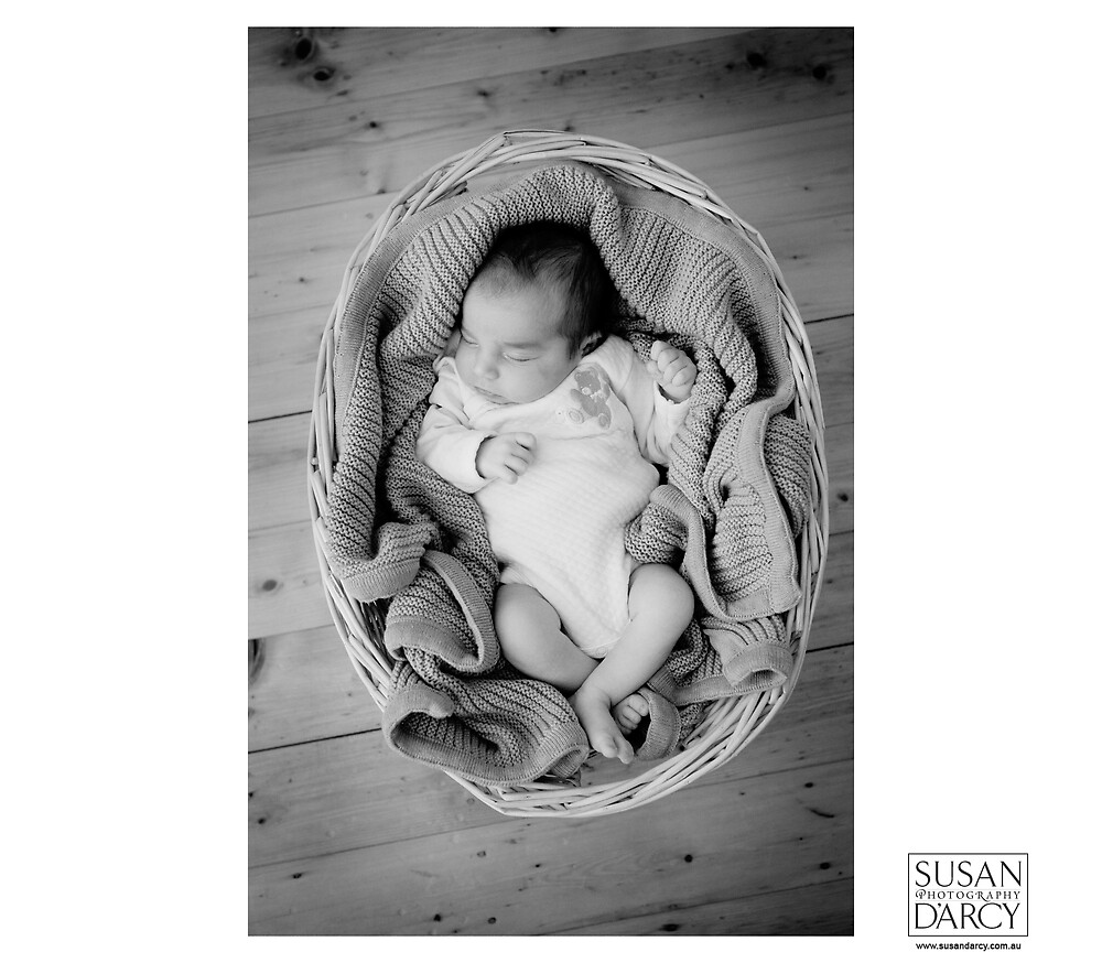 Basket by SusanD