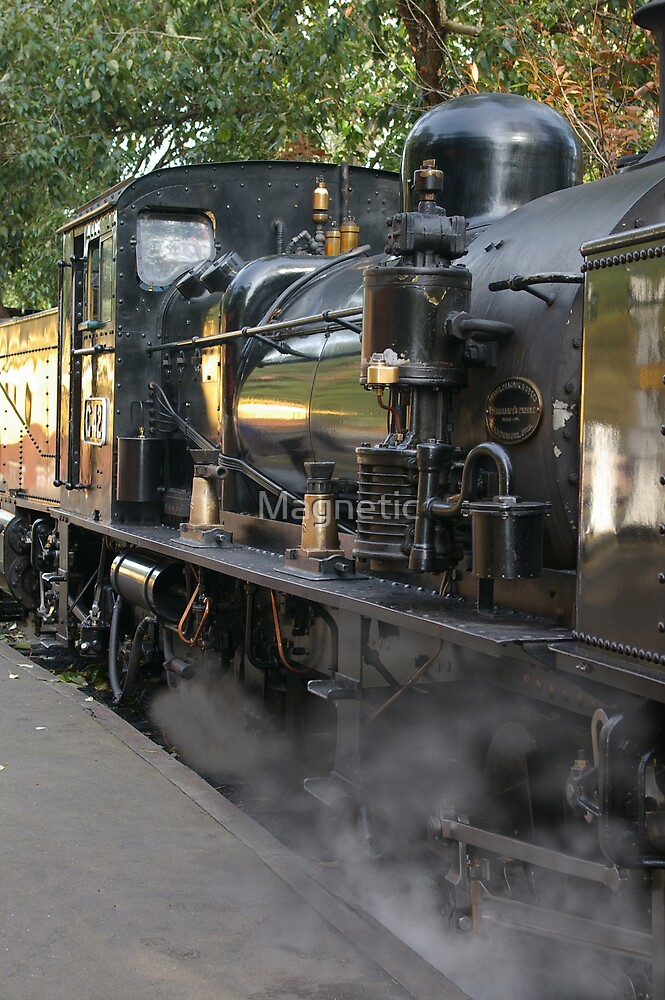 Puffing Billy 3 by Magnetic