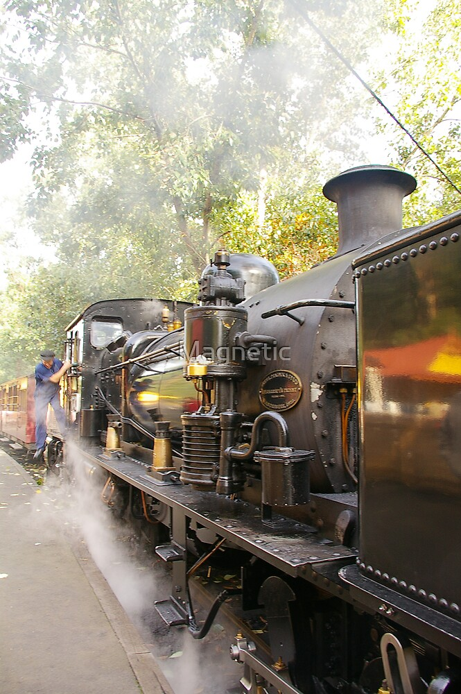 Puffing Billy 4 by Magnetic