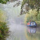 The Basingstoke Canal by Stephen Liptrot