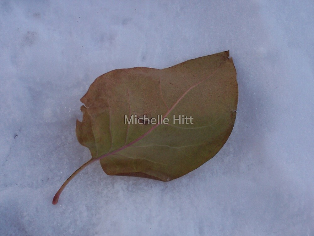 Solitude by Michelle Hitt