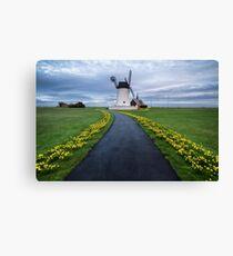 Lytham Windmill Daffodils Canvas Print