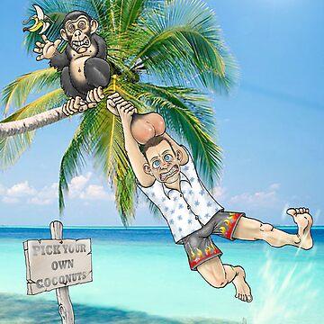 Beach monkey by lyndavies