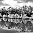 Mirror Image B&W by photomama4