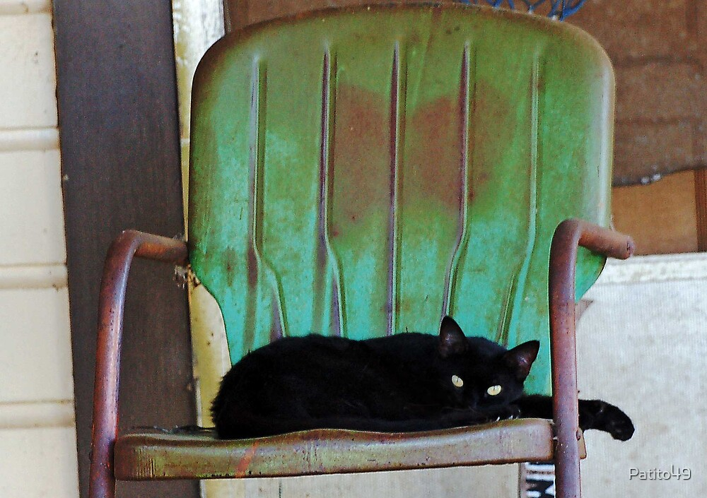 The Cat in the Chair by Patito49