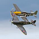 Spitfire & P-51 Mustang by Stephen Liptrot