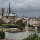 Another Cloudy Day In Paris - 1 ©  by © Hany G. Jadaa © Prince John Photography