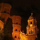 Malaga Cathedral at Night by wiggyofipswich