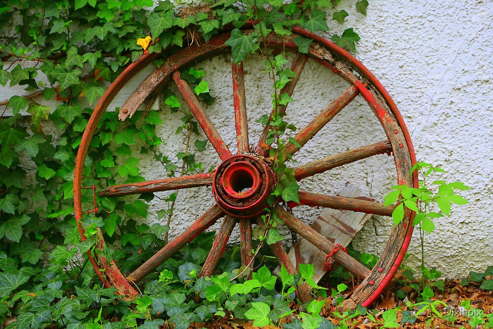 Wagon Wheel with contrast by Dixiepix