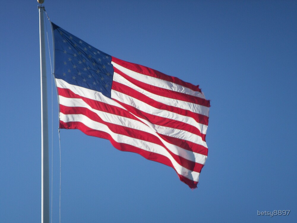 American Flag by betsy8897