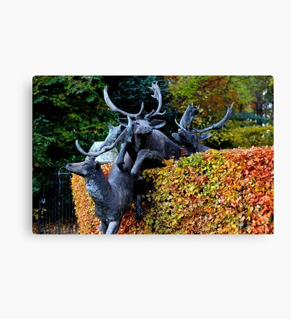 Anyone seen Rudolf? Canvas Print