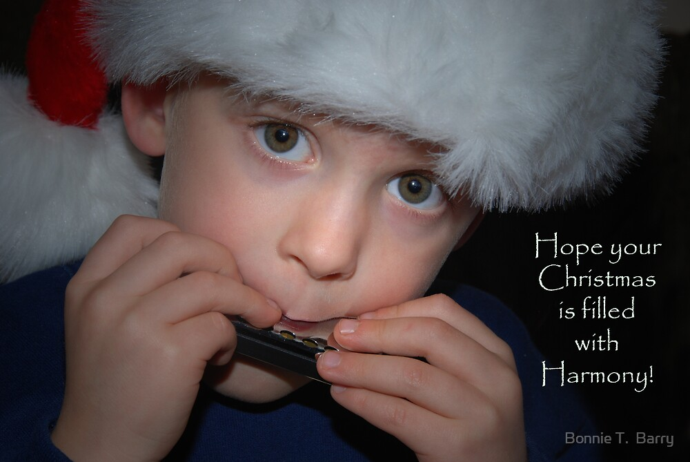 Harmonious Christmas by Bonnie T.  Barry