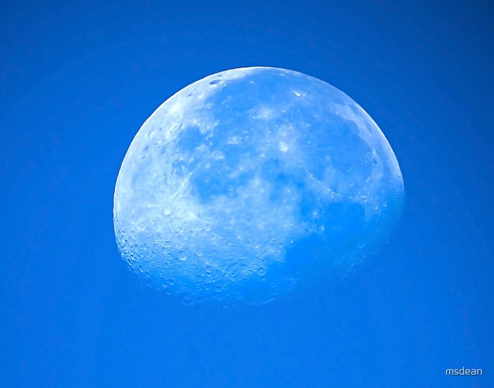 Blue Moon by msdean