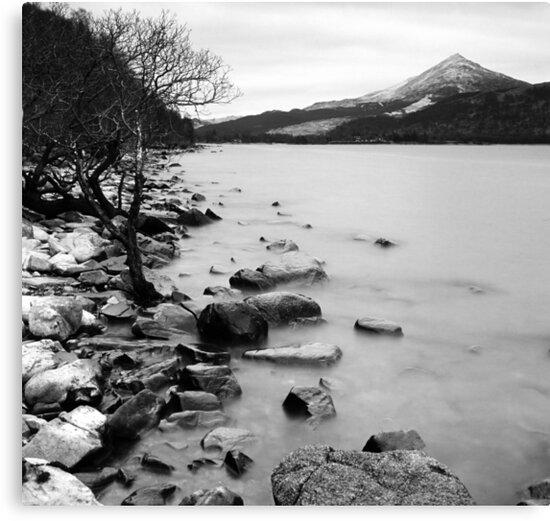 Loch Rannoch Shoreline by Tim Haynes