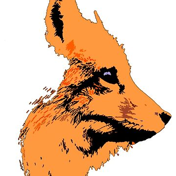 Fox by shu321