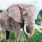 Elephant by Luke Tomlinson