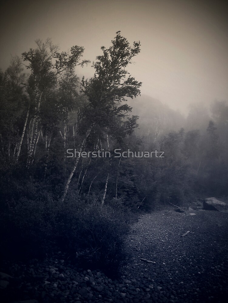 Into the Fog.... by Sherstin Schwartz