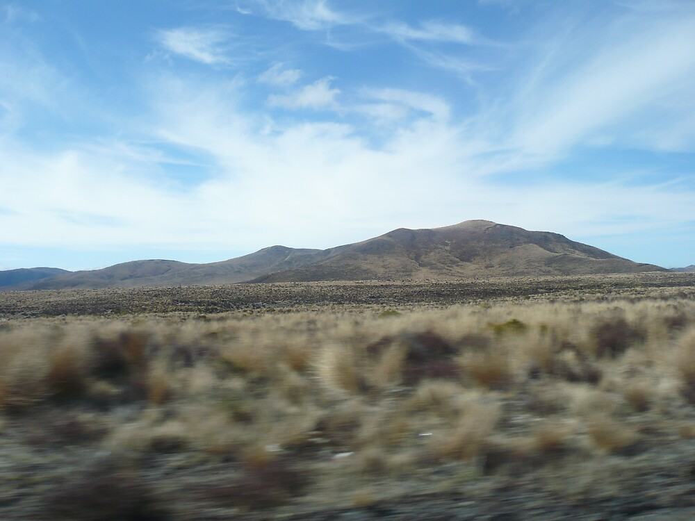 Desert Road by greeneyedgirl