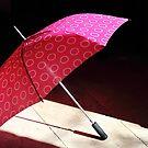 Sun dried umbrella by Paul Pasco
