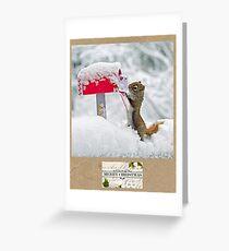 What A Cute Squirrel Greeting Card