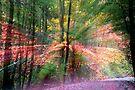Fall ExpLosion by martinilogic
