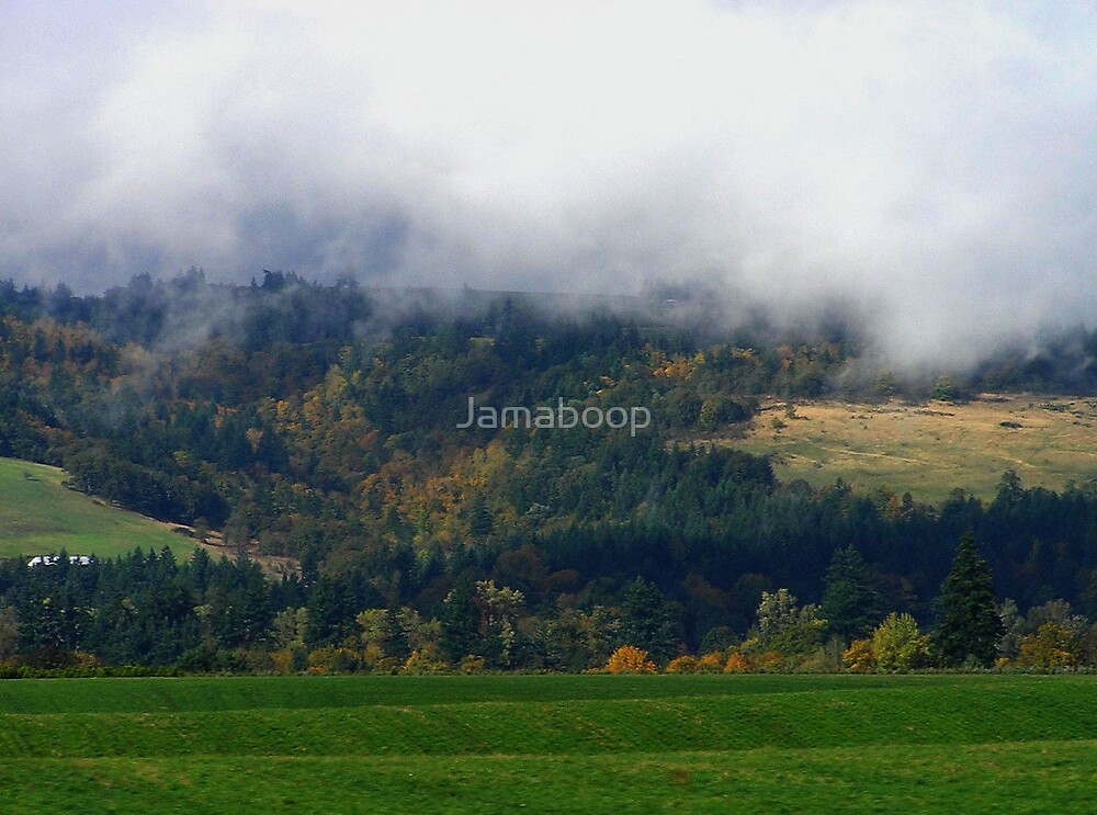 Landscape in Oregon by Jamaboop