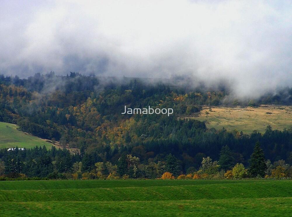 Landscape in Oregon by Jamaboop