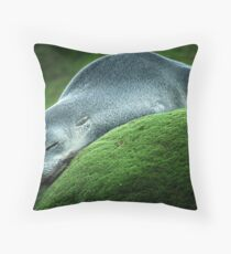 Flat Out Throw Pillow