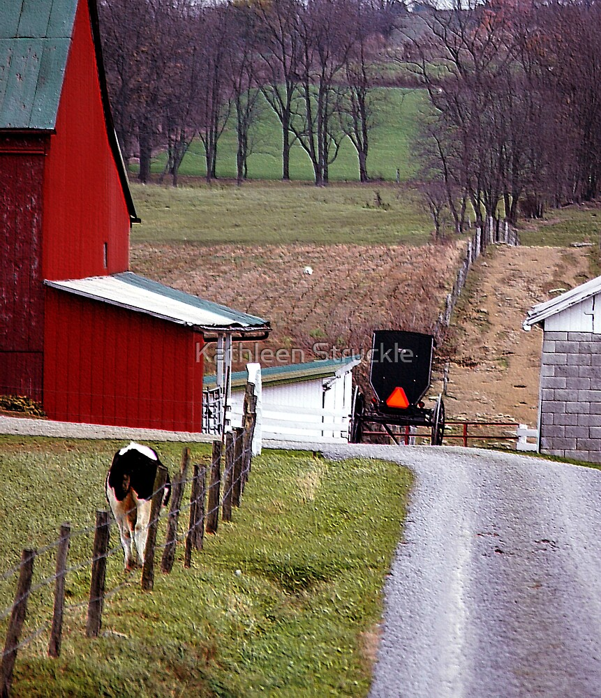 Amish Farm 2 by Kathleen Struckle