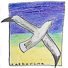Gliding seagull in the summer sky by DucatiCatArt