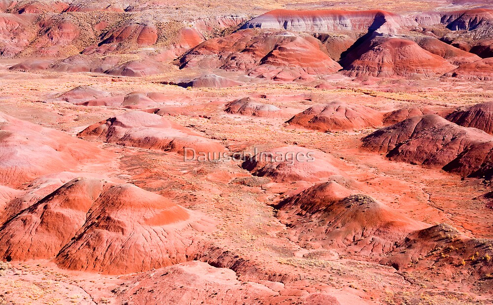 Red Planet by DawsonImages