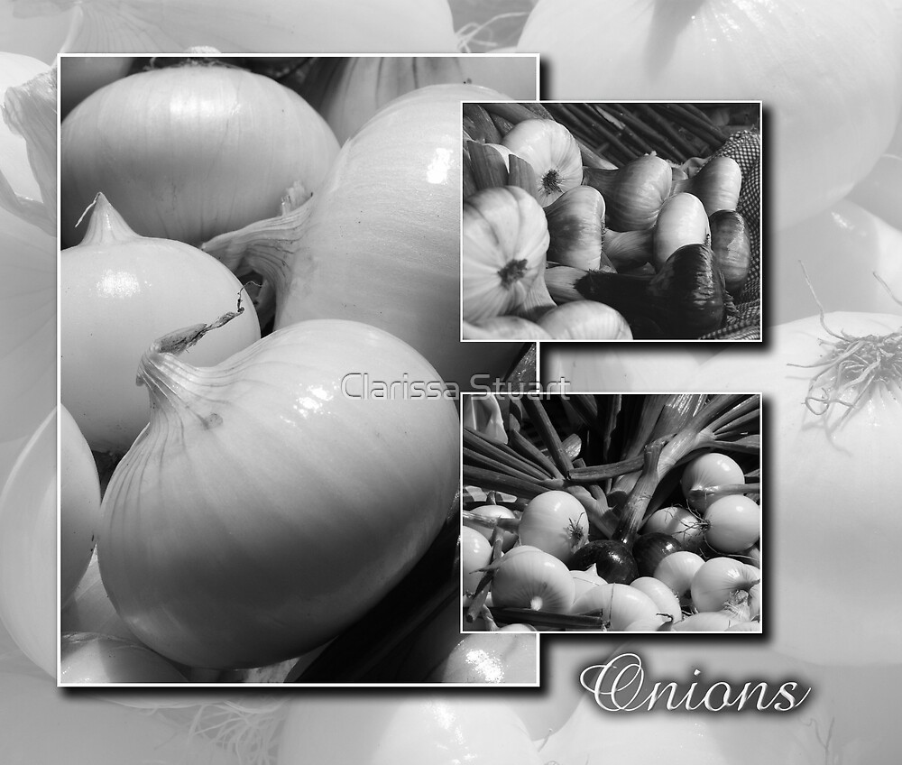 Onions by Clarissa Stuart