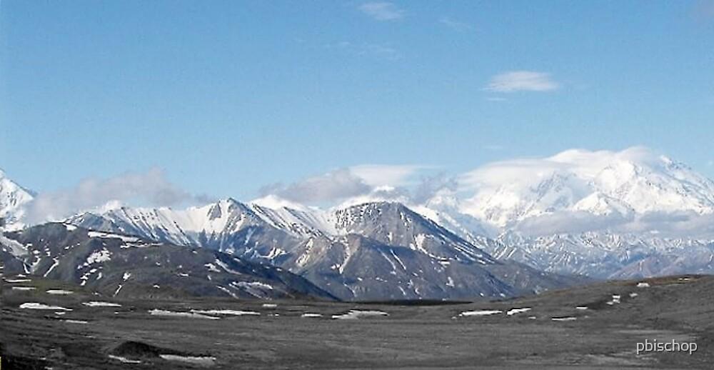 Alaska Range Mountains Close Up  by pbischop