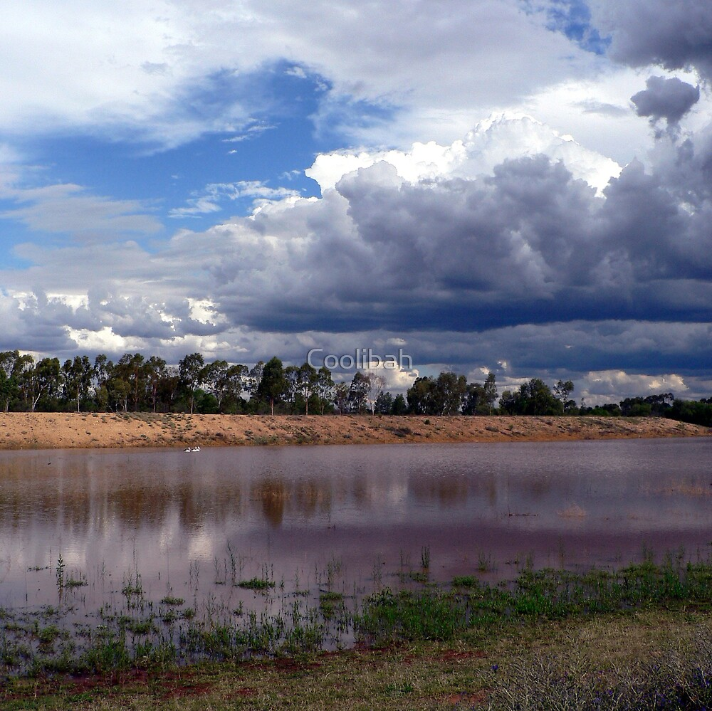 Glorious Storm Clouds  by Ruth Anne  Stevens