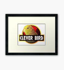 Clever Bird Framed Print