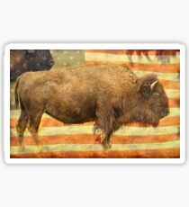 American Buffalo Sticker