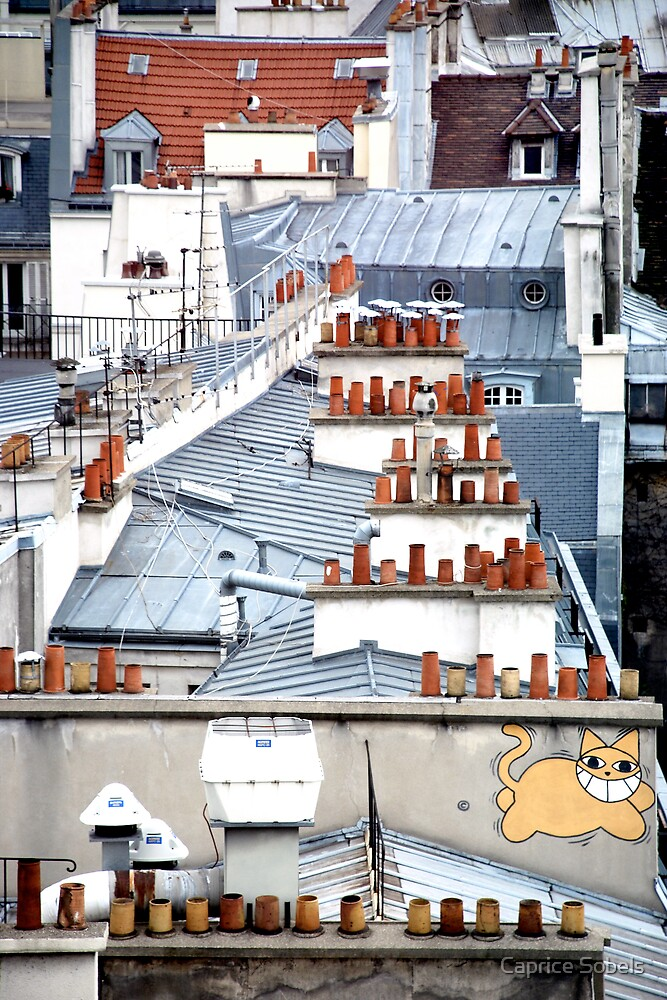 Cat on a Paris Roof by Caprice Sobels
