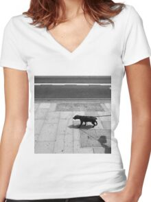 Taking The Human For A Walk Women's Fitted V-Neck T-Shirt
