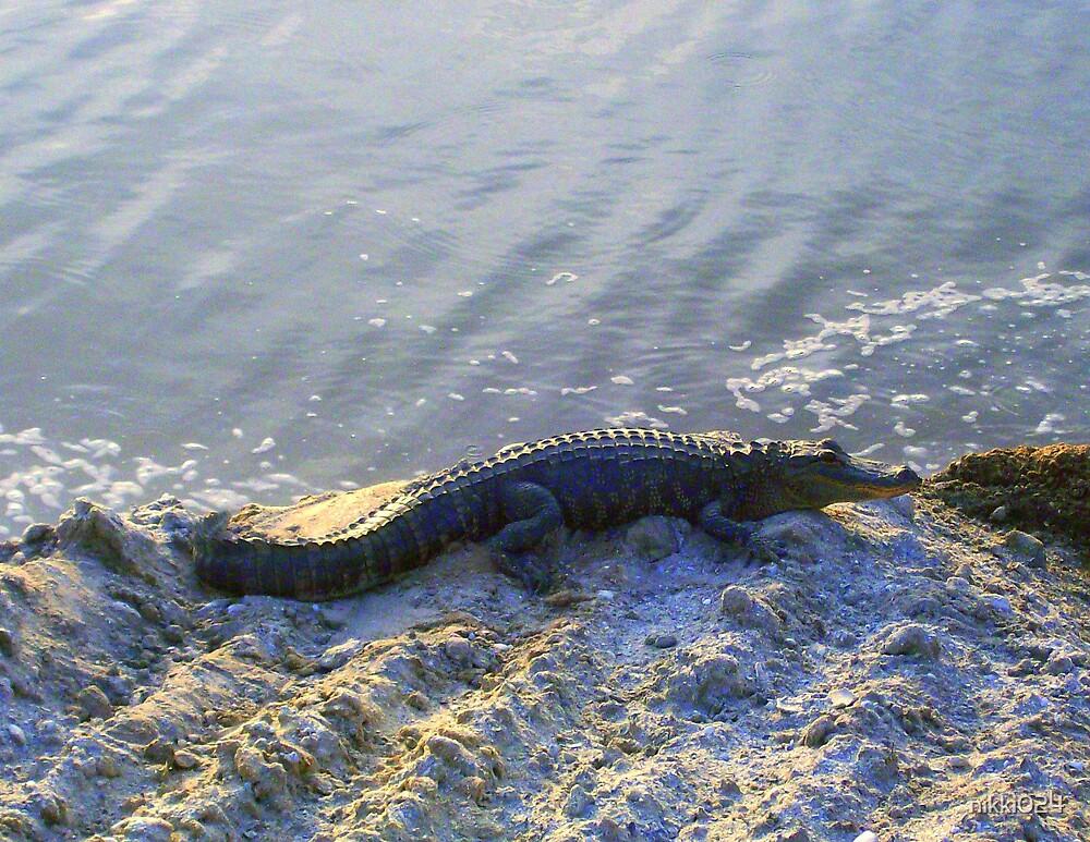 FLORIDA GATOR by nikki024