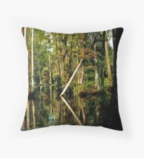 Subtle shades of beauty Throw Pillow