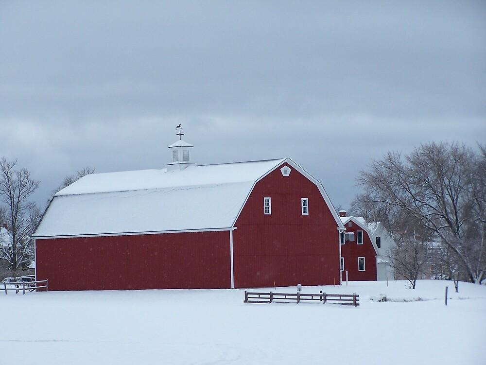 Barn Yard by Gene Cyr