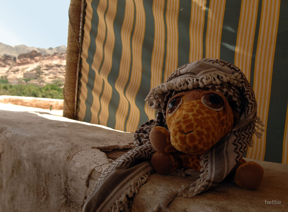 Gordon keeping cool in the desert by hettie